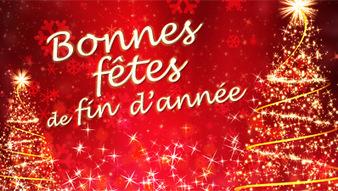 BONNES FETES DE FIN D'ANNEE 2020 ET BONNES VACANCES