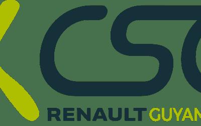 CSE SOCIAL : ACTIONS DES ELUS CFE-CGC
